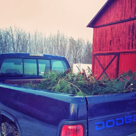 Vintage truck full of pine boughs to make wreaths