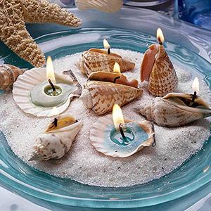 El Poder Magico De Los 4 Elementos Las Conchas De Mar En La Magia - Fotos-de-conchas-de-mar