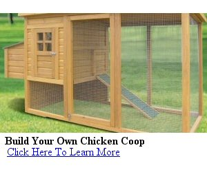 best chicken coop plans