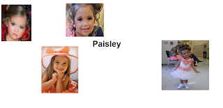 paisley scott dicky