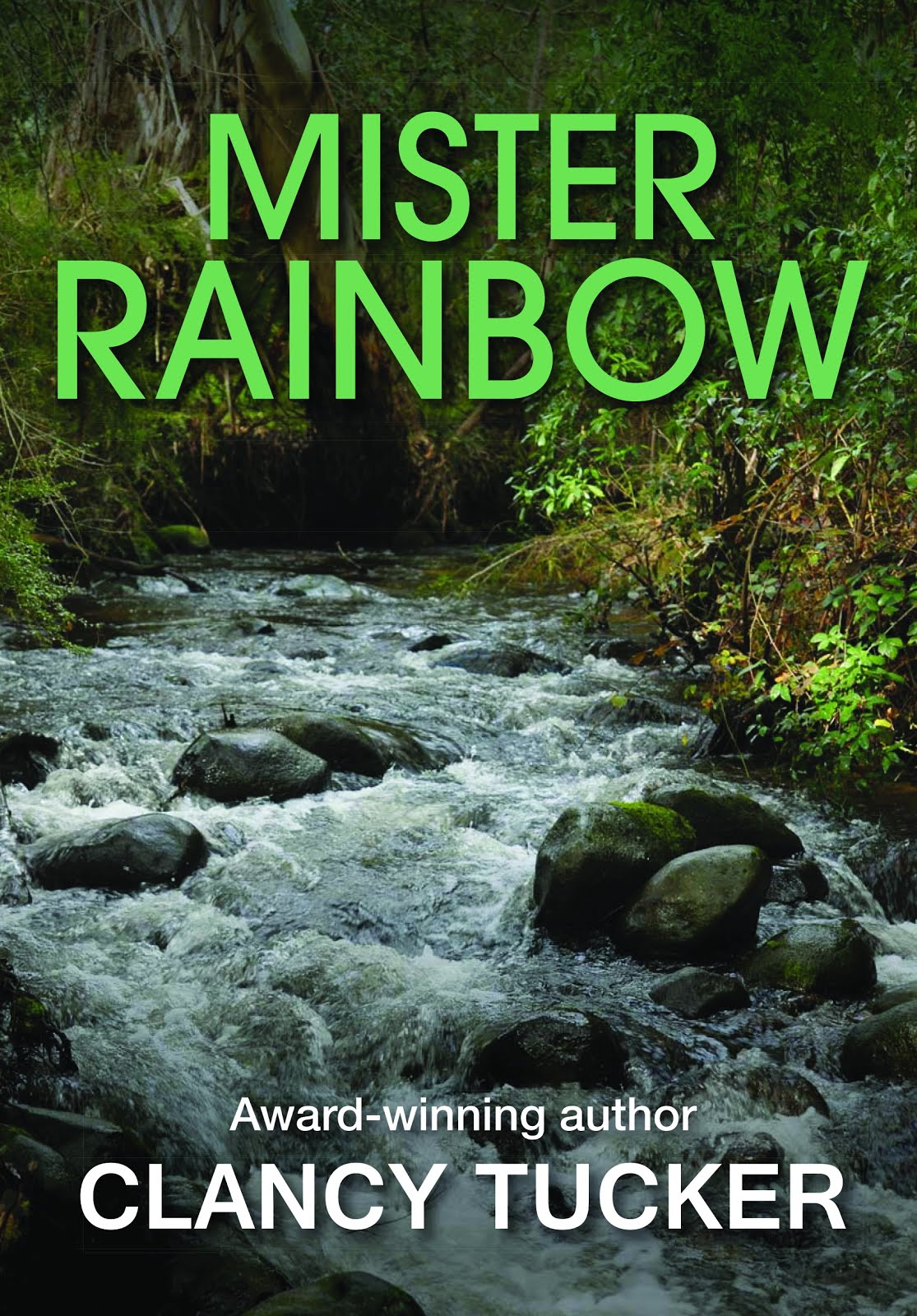BUY 'MISTER RAINBOW' PAPERBACK FROM OUTSIDE AUSTRALIA