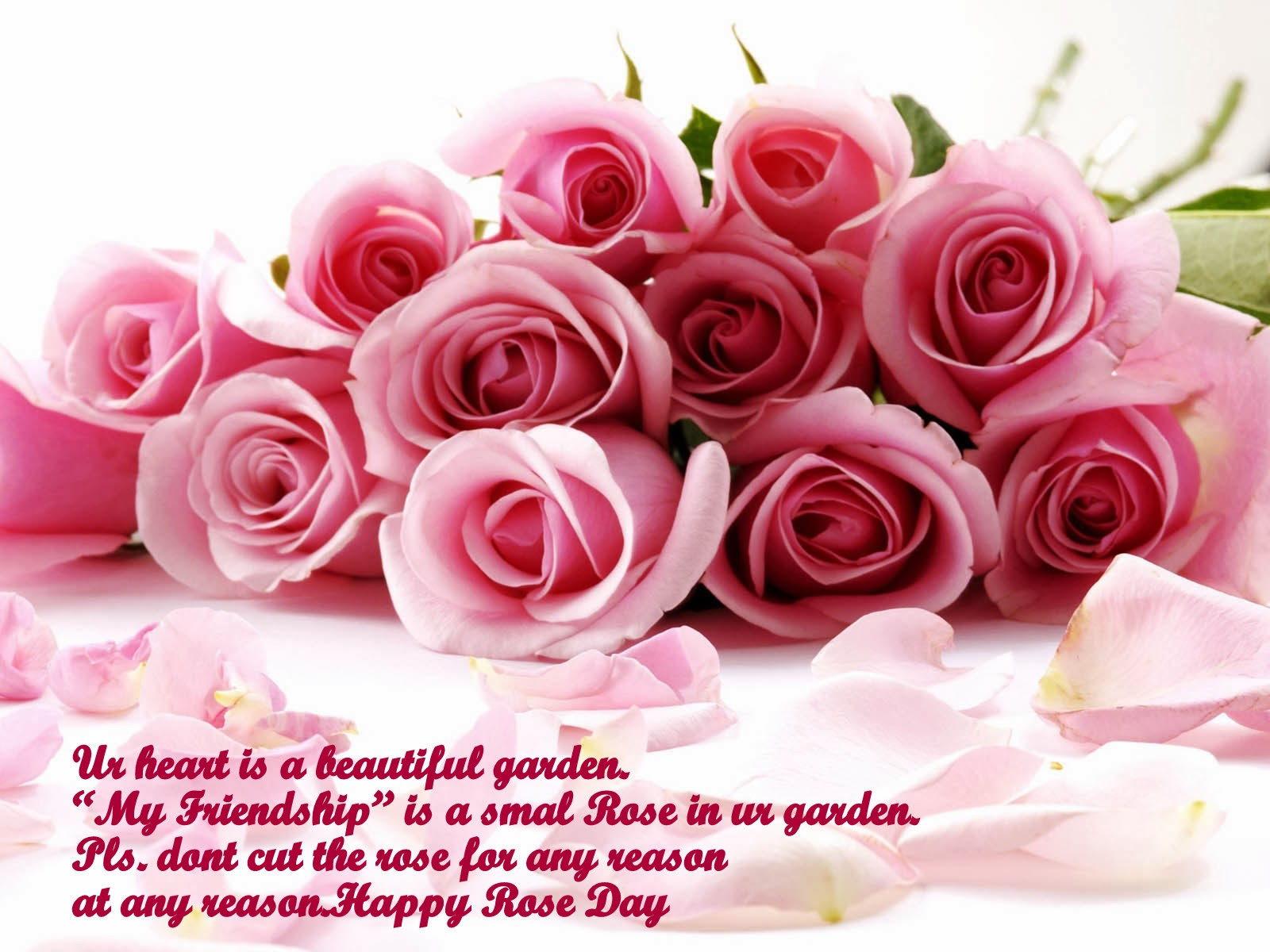 happy rose day 2014 wallpaper pink rose greeting sayings quotes