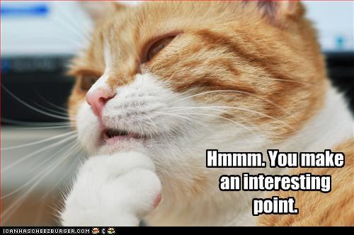 Image - 2131432829 cat pondering if want xlarge.jpeg | I Love ...