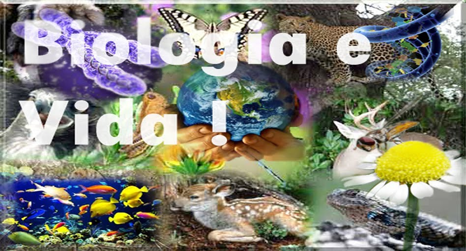 Biologia e Vida !