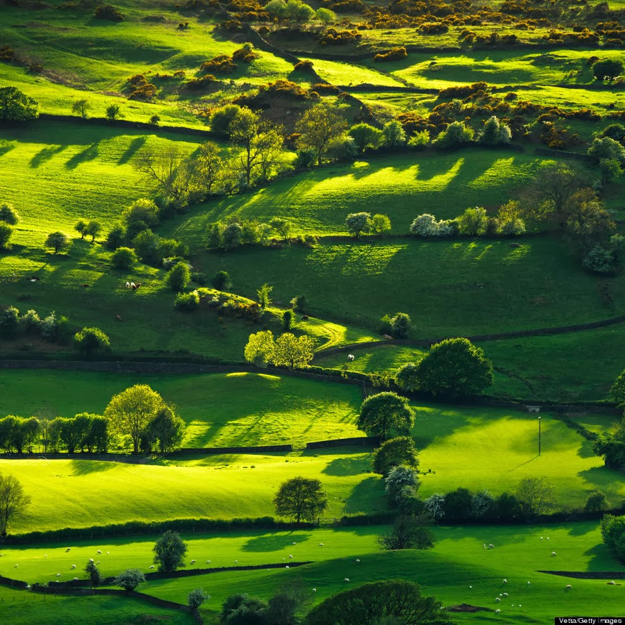 Lyth Valley in the Lake District, Cumbria, England