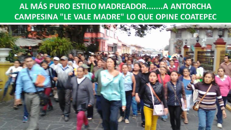 """AL MÁS PURO ESTILO MADREADOR.......A ANTORCHA CAMPESINA """"LE VALE MADRE"""" LO QUE OPINE COATEPEC"""