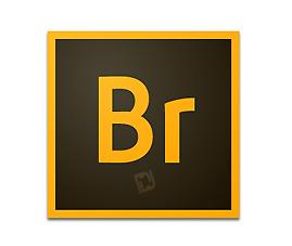 Adobe Bridge CC v6.0.0.151 32/64 Bit + Crack Full Version Free Download