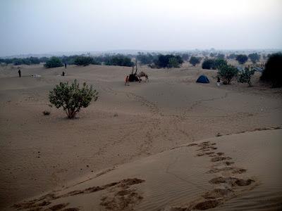 Jaisalmer desert, Thar desert Rajasthan