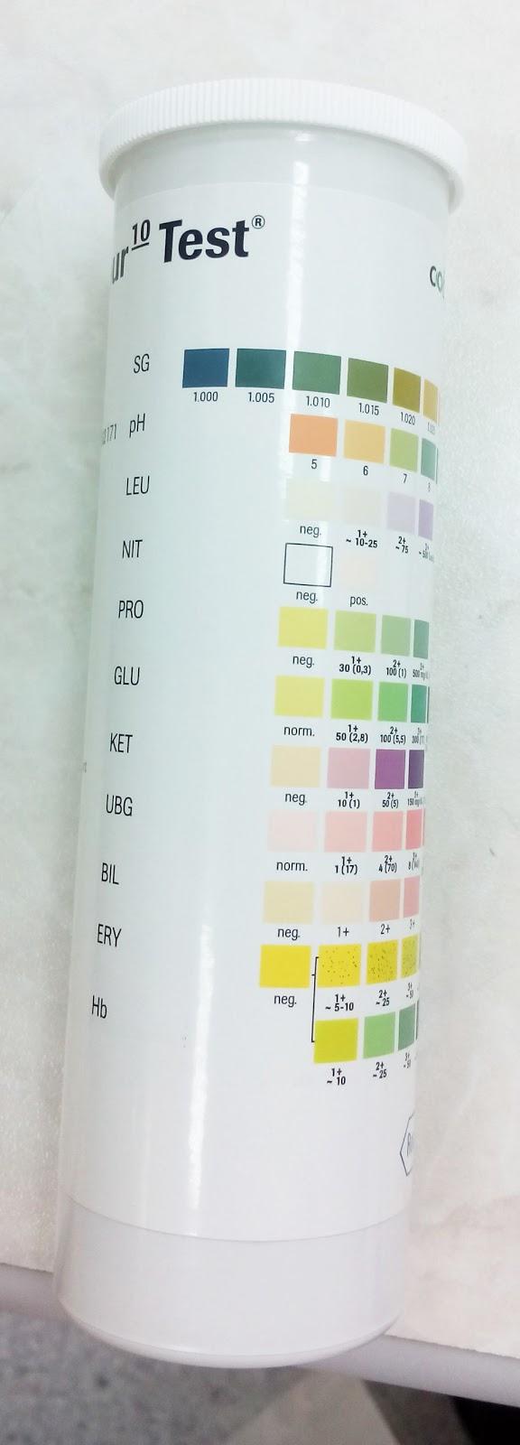 leukocyter och protein i urin