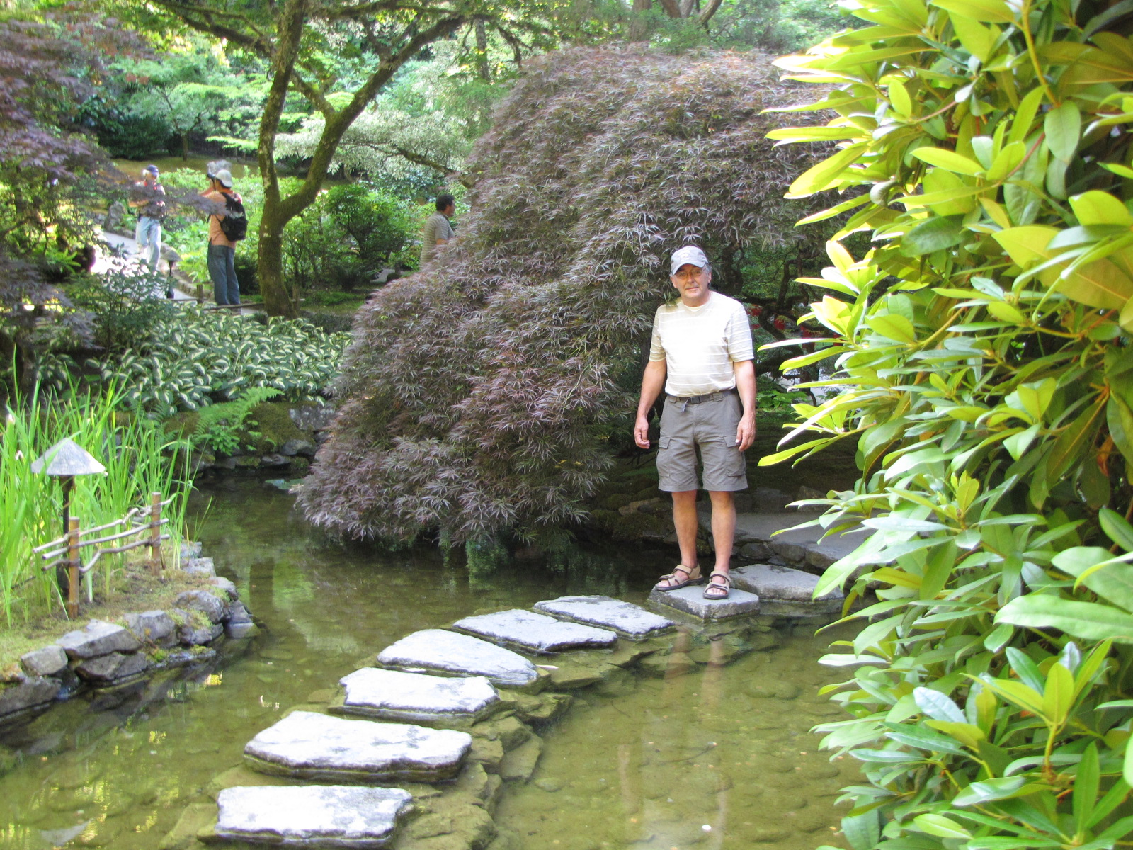 Nicole ouest2 changement au programme - Castorama jardin pas japonais angers ...