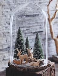 Erdő, erdő, erdő