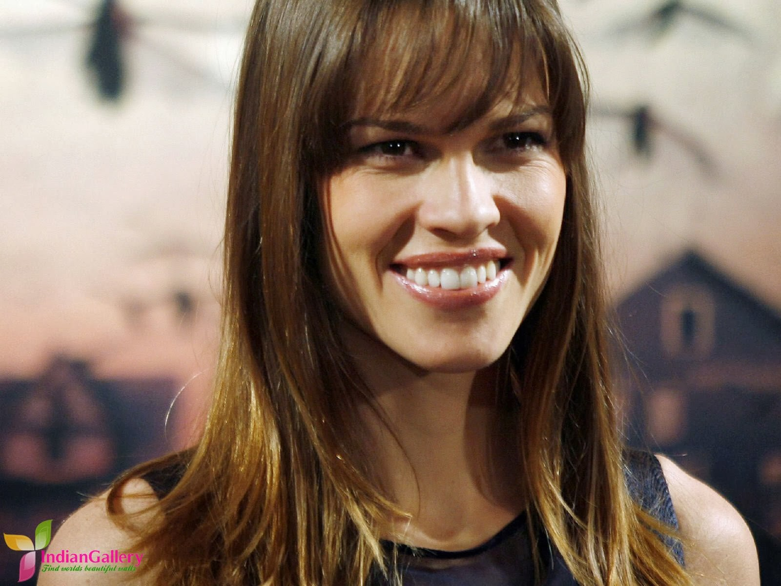 Hollywood Actress Hilary Swank Latest Spicy Stills Photos Hilary Swank
