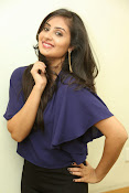 Bhanu sri mehra sizzling photos-thumbnail-14
