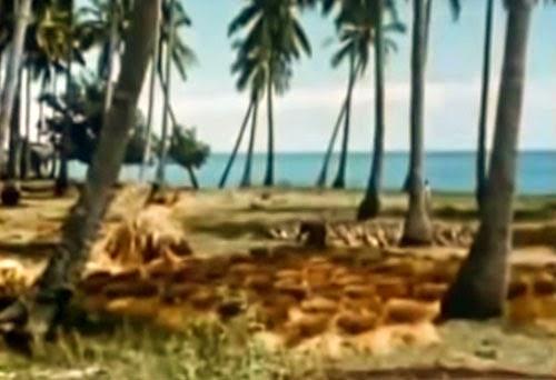 Gambar Pantai Kuta