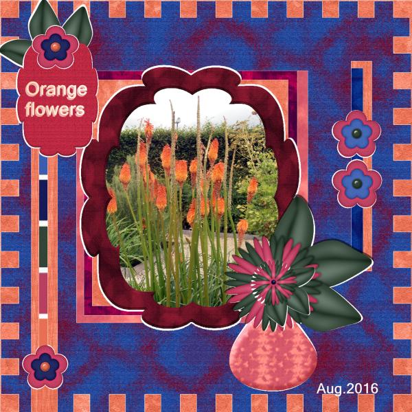 Aug. 2016 - Orange flowers