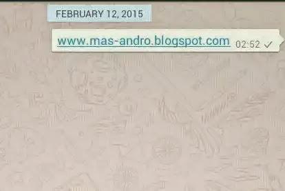 Tanda Centang Whatsapp terkirim ke server