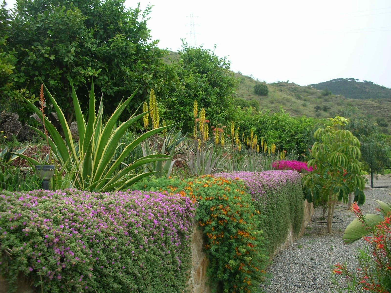 Arte y jardiner a directrices de dise o de un jard n - Plantas para arriates ...