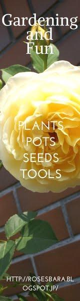 gardening and fun