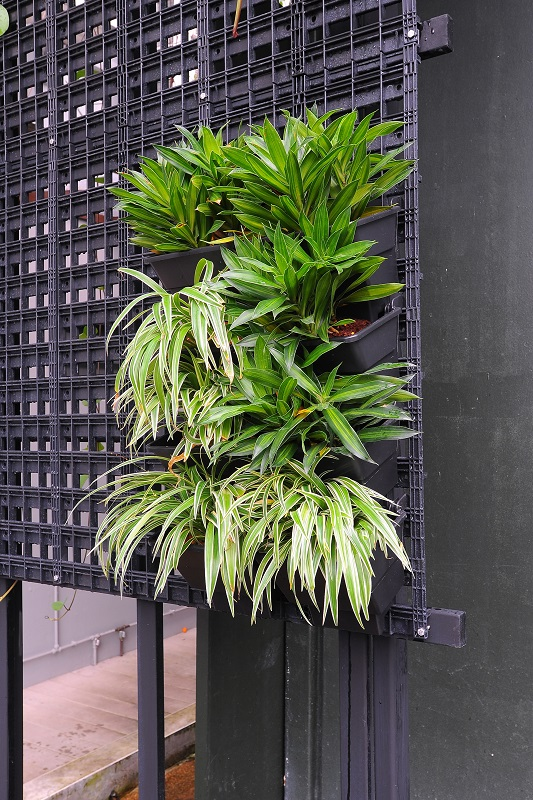 Abovecapricorn green wall systems for Green wall system