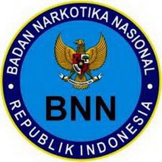 Contoh Soal CPNS BNN 2013