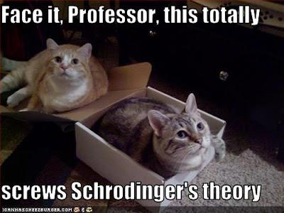 ... Crafts & Pretty Things Blog: Cat Thursday - Schrödinger's Cat again