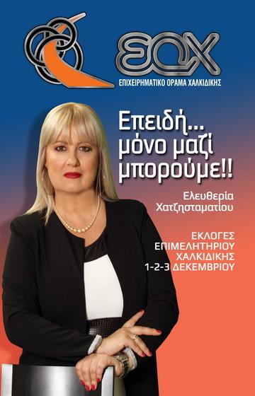 ΕΠΙΧΕΙΡΗΜΑΤΙΚΟ ΟΡΑΜΑ ΧΑΛΚΙΔΙΚΗΣ