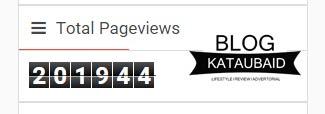 pageview kataubaid.com