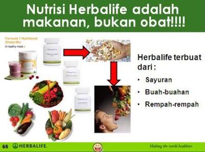 diet ibu menyusui herbalife