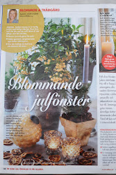 BLOMMANDE JULFNSTER