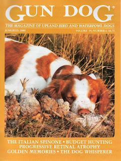 Brittany, cover photo for Gun Dog magazine