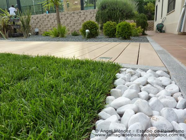 Como hacer abono casero plantas facilisimo for Diseno de jardines caseros