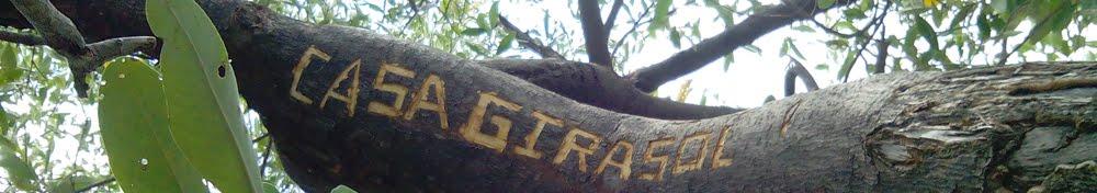 Casa Girasol Tagebuch