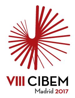 VIII CIBEM