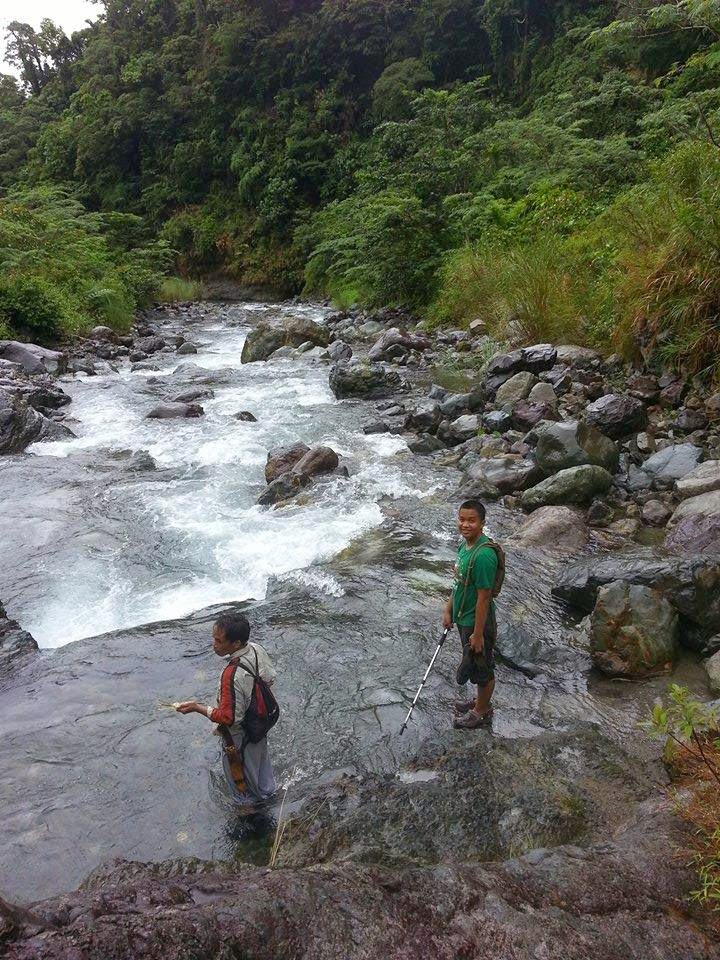rainforest sierra madre mountain ranges