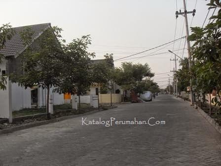 jalan utama Taman Wisata Regency
