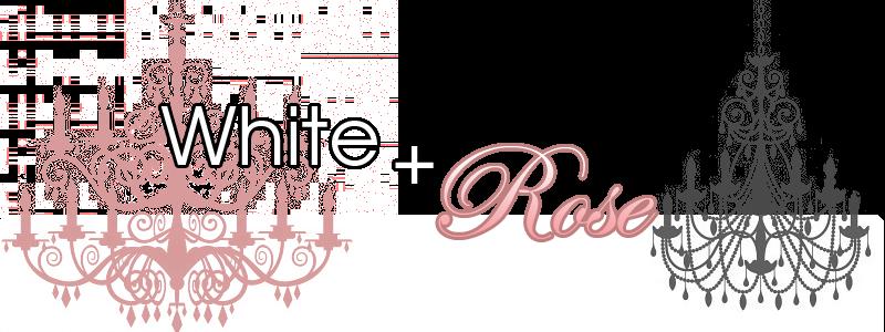 White + Rose