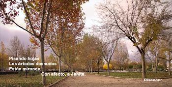 """Maravilloso regalo de mí querido amigo Disancor del blog """"Cachos de Vida""""."""