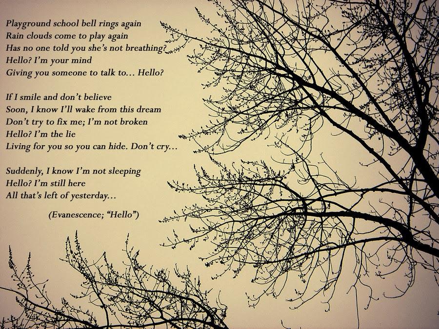 letras de la cancion evanescence: