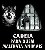 TODOS MERECEM RESPEITO