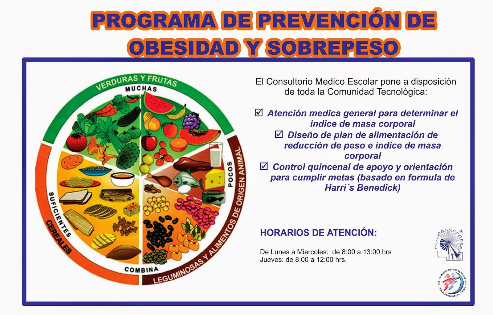 Instituto Tecnologico de Zacatepec - PROGRAMA DE