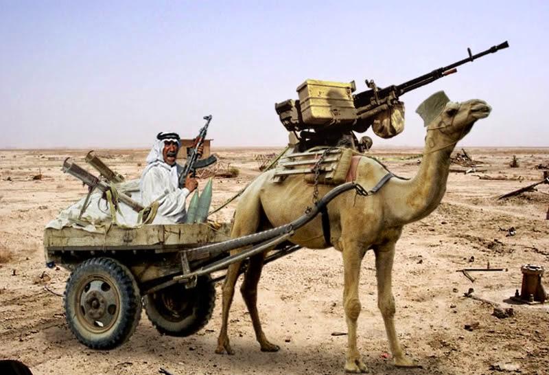 Camel-Gun-3344.jpg