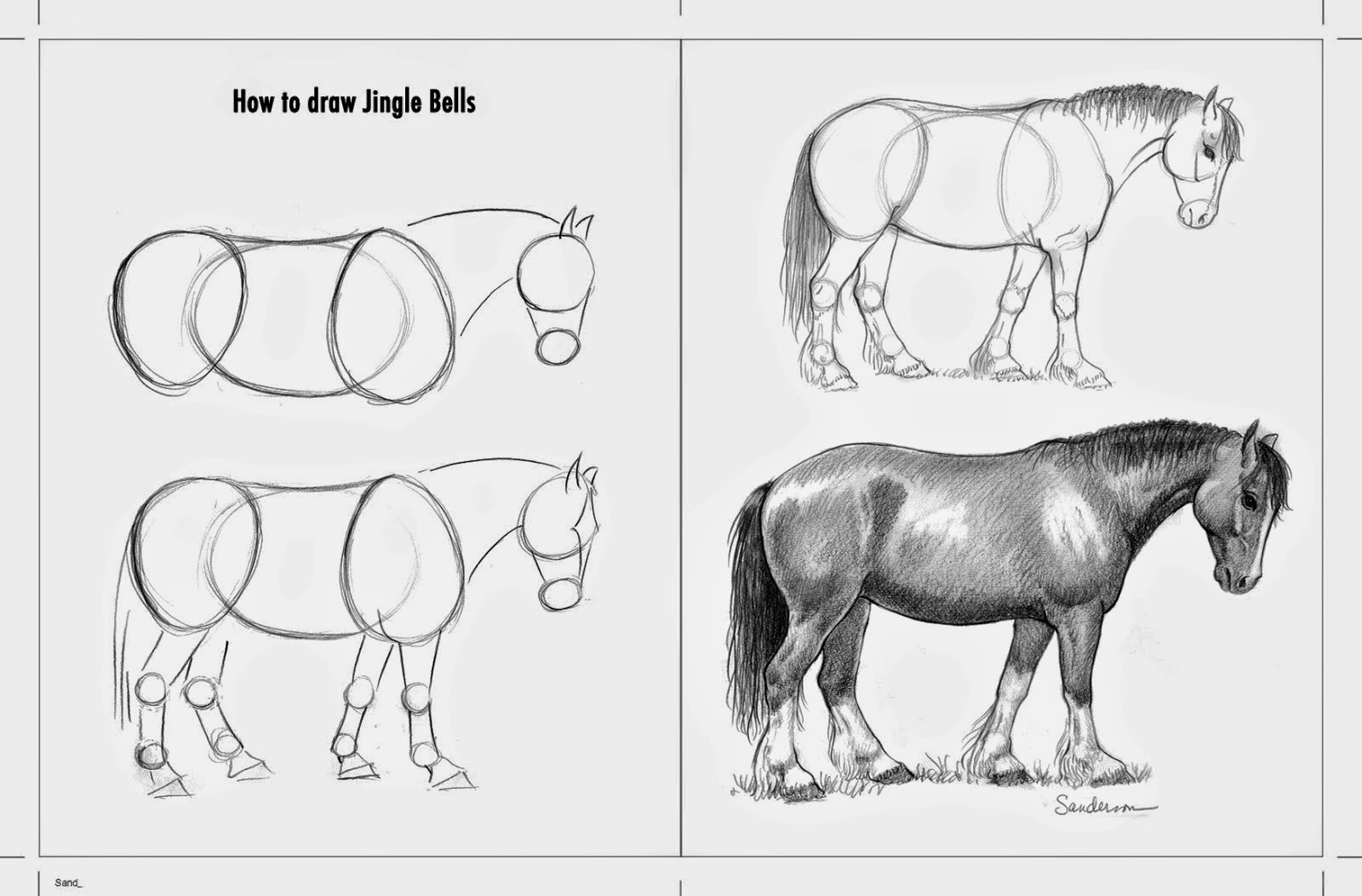 How To Draw A Horse I Have Always Wanted To Do A Howtodrawhorses Book Here  Is
