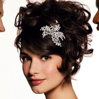 2009 Wedding Updos Hairstyles Pictures