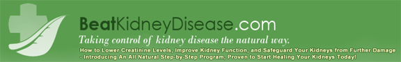 Taking Control of Kidney Disease the Natural Way