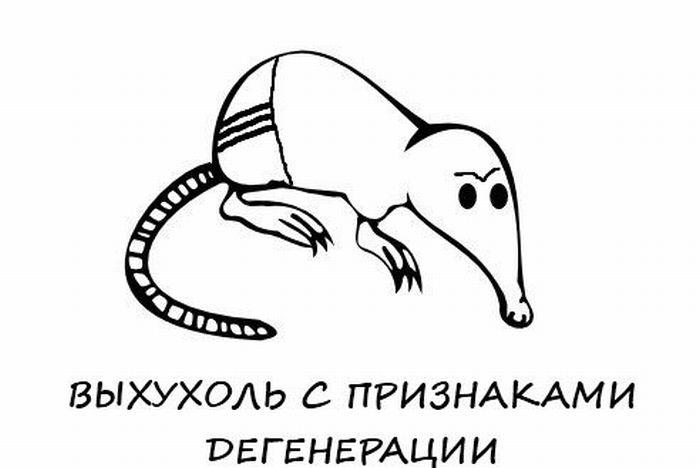 Анекдот Про Выхухоль