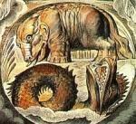 Το ανορθολογικό στοιχείο <br>στην ελληνική θεωρητική σκέψη