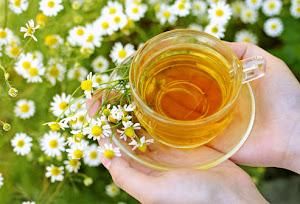 Trago um chá de camomila, para que possa sentar-se e sentir-se em casa!!!