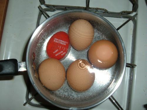 Boiling Egg Timer