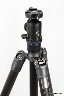 Sunwayfoto FB-36DDH on Nest NT-6294C Tripod closeup