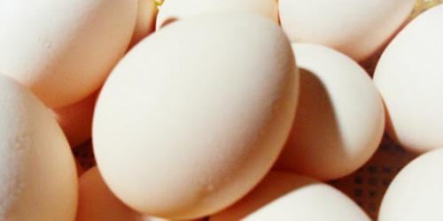 putih telur untuk mengatasi rambut uban